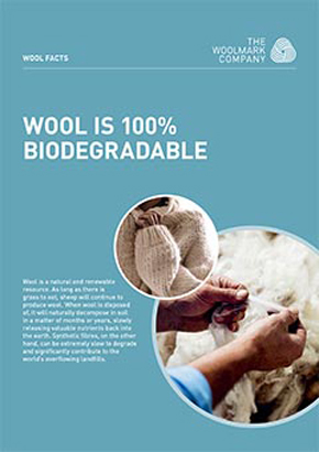 wool-is-100-per-cent-biodegradable-131217-1